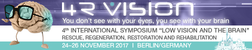 4th International Low Vision and the Brain Symmposium
